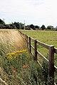Fencing at Stock Corner - geograph.org.uk - 1425790.jpg