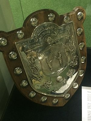 Fingal Memorial Shield - The Fingal Shield