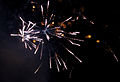 Firework 6a (8153507147).jpg