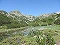 Fish Banderishko lake, Pirin National Park 09.JPG
