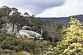 Fish Boulder, Derby, Tasmania (29627989925).jpg
