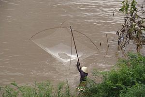 Fishing industry in Laos - Fishing in Laos