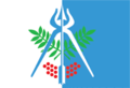 Flag of Izhevsk (Udmurtia).png
