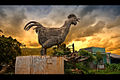 Flickr - Shinrya - Giant Chicken.jpg