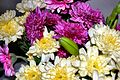 Flickr - ronsaunders47 - BLOOMS UP CLOSE.2.jpg