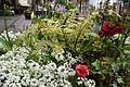 Flower Planter 2 2017-04-21.jpg