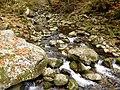 Flusslauf der Wolfsteiner Ohe.jpg