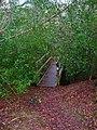 Footbridge, Eight Acre Wood - geograph.org.uk - 344330.jpg