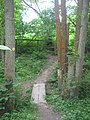 Footbridge near Knights Hole - geograph.org.uk - 1339435.jpg