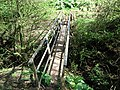 Footbridge over Worsall Gill - geograph.org.uk - 401652.jpg
