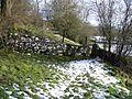 Footpath below Alyn Bank - geograph.org.uk - 341999.jpg