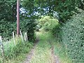Footpath near Little Mount - geograph.org.uk - 1399663.jpg