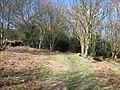 Footpath near May Beck - geograph.org.uk - 1776030.jpg