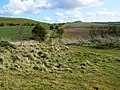 Footpath to the south, near Liddington Hill - geograph.org.uk - 742009.jpg