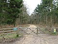 Forestry gate in Ampfield Wood - geograph.org.uk - 1780254.jpg