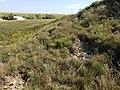 Fort Hays Limestone, active slumping 20190914 153325.jpg