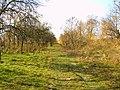 Foto - panoramio - bellla.jpg