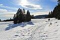 Fruitières de Nyon in winter - panoramio (55).jpg