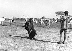 Fula cattle herders by John Atherton.jpg