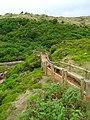 Furnas do Enxofre - Ilha Terceira - Portugal (2496433331).jpg