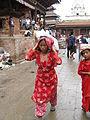 Gai Jatra Kathmandu Nepal (5116098631).jpg