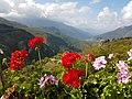 Galichnik, Macedonia (FYROM) - panoramio - BETASPED d.o.o. (8).jpg