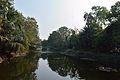 Garden Pond - Jadavpur University - Kolkata 2015-01-08 2353.JPG