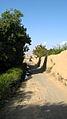 Garden Way - Wall - trees - streamlet - 17 Shahrivar st - Nishapur 25.JPG