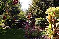 Garten 2013-06-03 23-26.jpg