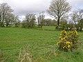 Garvaghy Townland - geograph.org.uk - 1242596.jpg