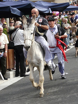Virgen Blanca Festivities - A donkey race is organized on 25 July in anticipation of the Virgen Blanca festivity