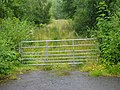 Gated entrance to plantation north of Craigencoon. - geograph.org.uk - 514695.jpg