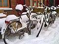 Gerbrand Bakkerstraat Groningen - panoramio (2).jpg