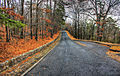 Gfp-arkansas-hot-springs-road-up-the-mountain.jpg