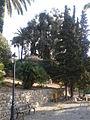 Giardini Winter 3.jpg