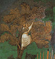 Giotto - Legend of St Francis - -23- - St Francis Mourned by St Clare 2.jpg