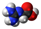 Spacefill model of a glycocyamine minor tautomer