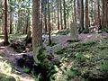 Goldbrunnen - panoramio.jpg