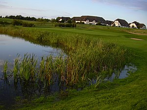 Balmer See - Balmer See Golf Club: 9th green with its water obstacle