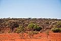 Gone Driveabout 17, Bush at Yuin Station, Western Australia, 24 Oct. 2010 - Flickr - PhillipC.jpg
