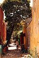 Gorée - Rue (2).JPG