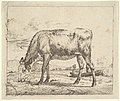 Grazing Calf, from Different Animals MET DP828088.jpg