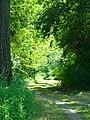 Green - panoramio (7).jpg