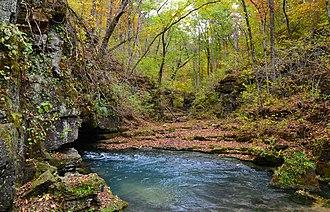 Greer Spring - Image: Greer Spring Oct 2013 067
