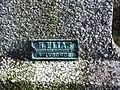 Grimbergen Meerstraat Begraafplaats (18) - 307997 - onroerenderfgoed.jpg