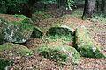 Großsteingrab Heine 2 06.JPG