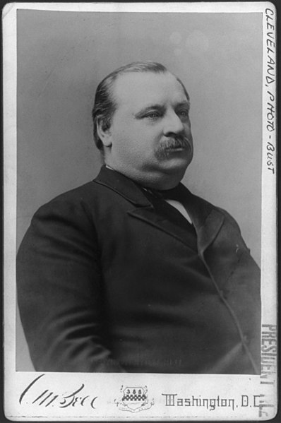 File:Grover Cleveland, Pres. U.S. LCCN2003688983.jpg