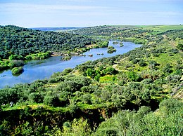 http://upload.wikimedia.org/wikipedia/commons/thumb/4/41/Guadiana_river.jpg/260px-Guadiana_river.jpg