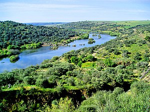 Serpa - A view of the Guadiana River within the territory of Serpa