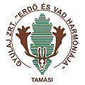 Gyulaj Zrt logo.jpg